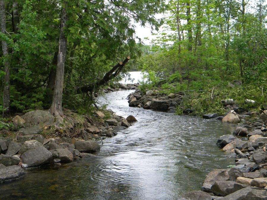 flowing river cfmi